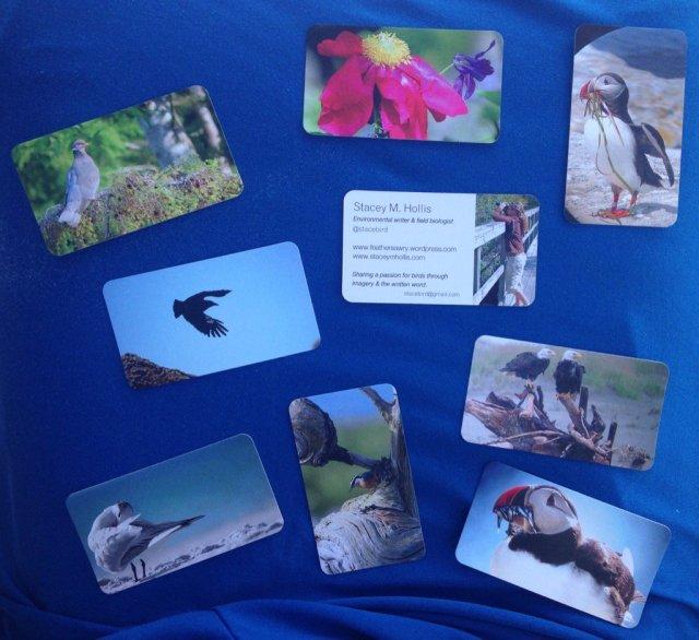 binnez cards
